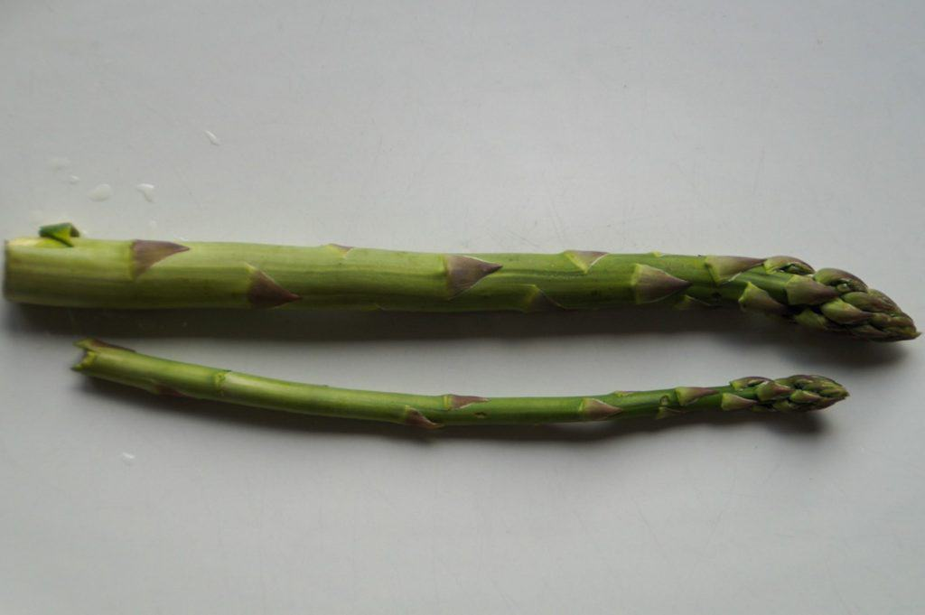 one small and one large asparagus spear